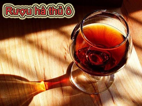 Liều lượng hà thủ ô ngâm rượu