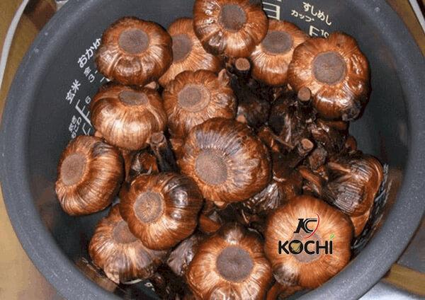 Dùng nồi cơm điện dễ làm tỏi đen bị ướt, chất lượng kém