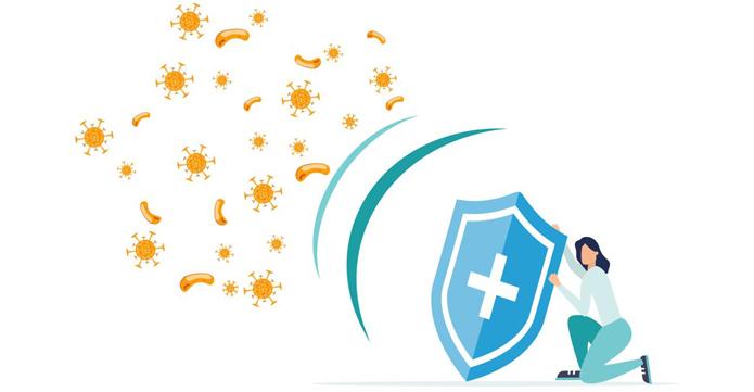 tăng cường hệ miễn dịch khi sử dụng hà thủ ô đỏ