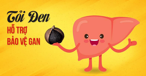 tác dụng của tỏi đen trong việc bảo vệ gan